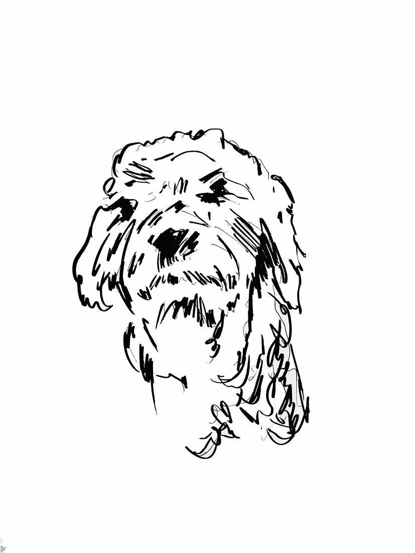 zwart-wit tekening hond